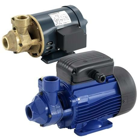 Lowara P Series Pumps